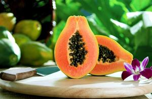 มะละกอ อาหารเพื่อสุขภาพ อร่อยดี แถมมีประโยชน์อีกด้วย